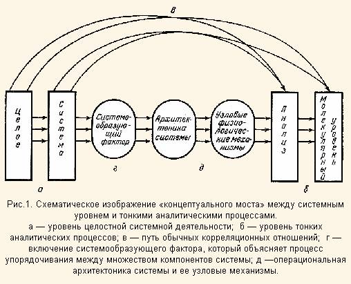 Друкер П Практика Менеджмента Скачать